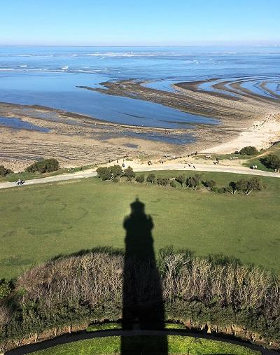 vue depuis le phare de cahssiron - ile d oleron