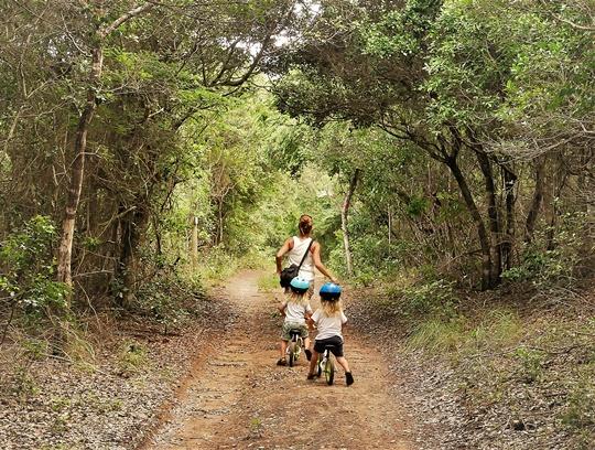 rocktail camp - wilderness safari - acces plage (5)