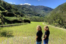 Les rizières de Banaue et Batad aux Philippines avec des enfants